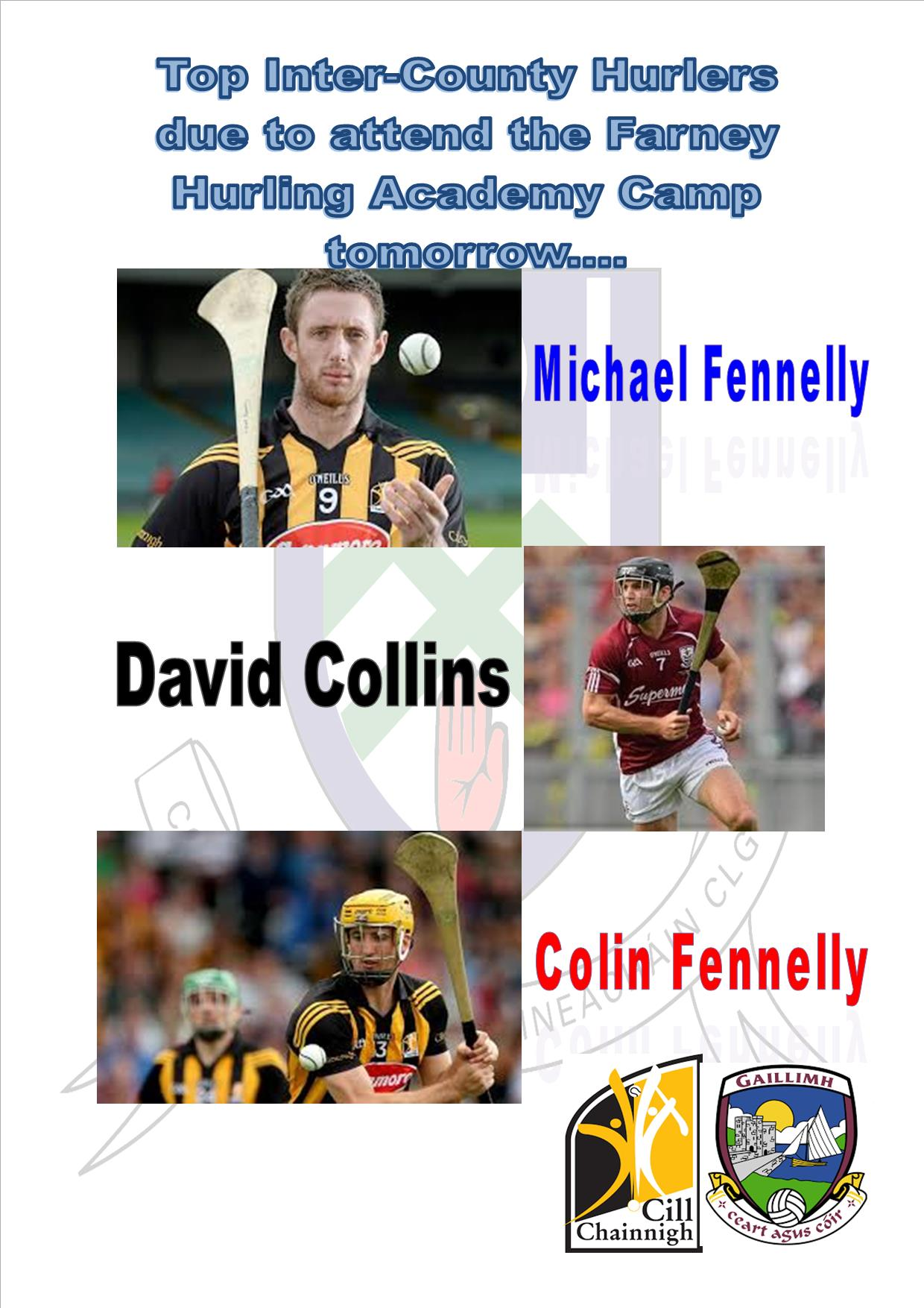 Farney Hurling Academy to welcome top Inter-County Hurlers