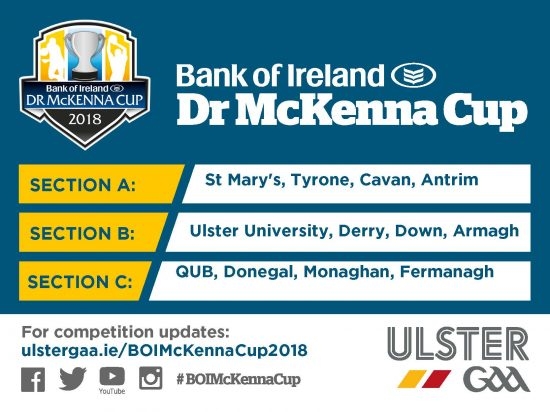 2018 Bank of Ireland Dr. Mc Kenna Cup Squad