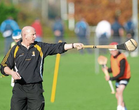 Martin Fogarty, National Hurling Development Manager and Former Kilkenny Senior Hurling Coach to Deliver Two Workshops This Weekend!